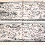 M-aa-15-41-Tabula Itineraria, Marco Velsero 7,8